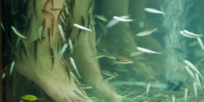 Fiskmanikyr