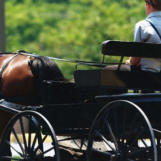 Häst och vagn picknick för två